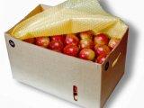 Pl�sticos Bolhas - para prote��o de frutas